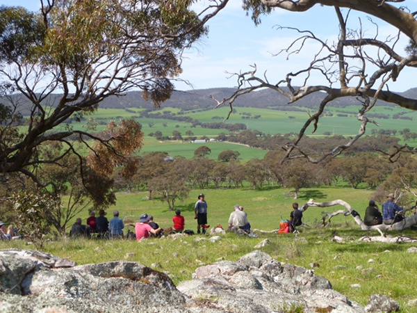 Enjoying the views from Quinn Gap toward the Tothill Ranges