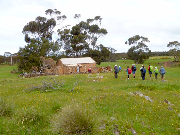 Lavender Federation Trail - Long abandoned stone cottage - a reminder of the tenacity and hardships of pioneer life