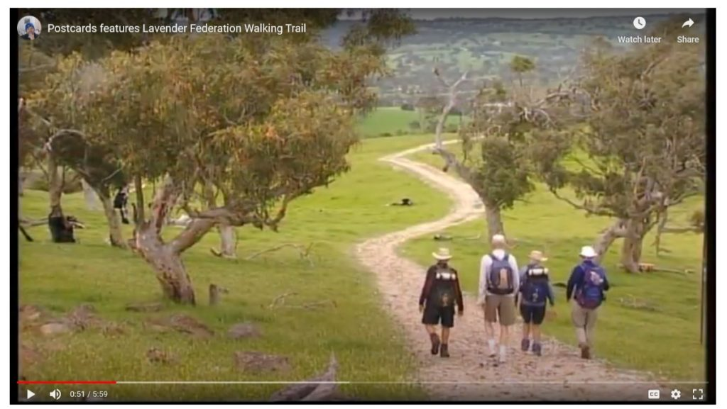 Postcards SA Features the Lavender Federation Trail - Video