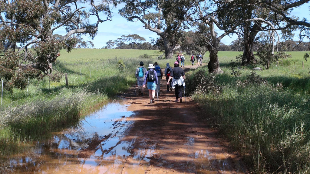 Waterloo to Manoora walk on opening of new trail section - photo by Peter Herriman